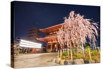 Tokyo, Japan at Senso-Ji Temple in the Asakusa District.-SeanPavonePhoto-Stretched Canvas Print