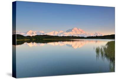 Denali Mountain and Reflection Pond-lijuan-Stretched Canvas Print