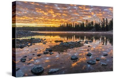 Yellowstone-Art Wolfe-Stretched Canvas Print