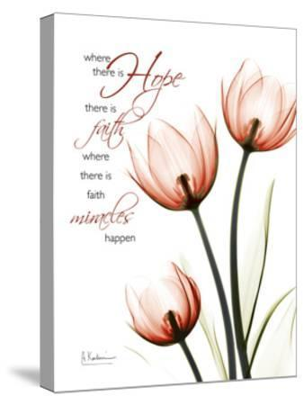 Tulip Hope-Albert Koetsier-Stretched Canvas Print