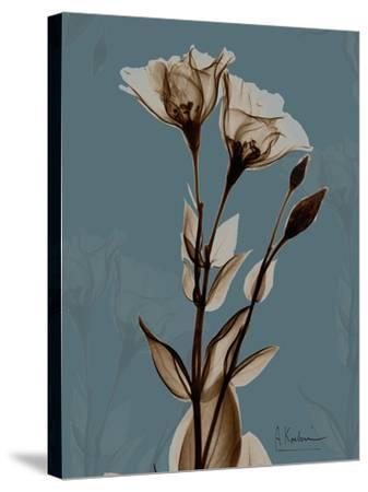 Deep Flora 2-Albert Koetsier-Stretched Canvas Print