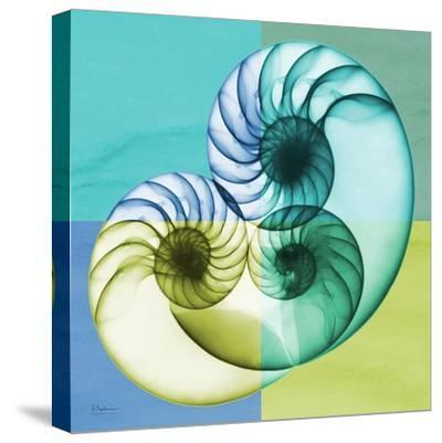 Aqua Filter 3-Albert Koetsier-Stretched Canvas Print