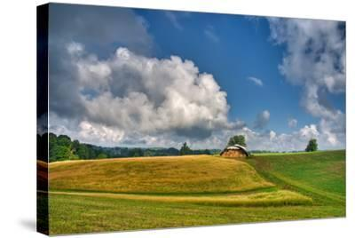 Hay Field-Bob Rouse-Stretched Canvas Print