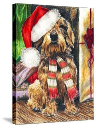 Dachsund Santa Hat-Barbara Keith-Stretched Canvas Print