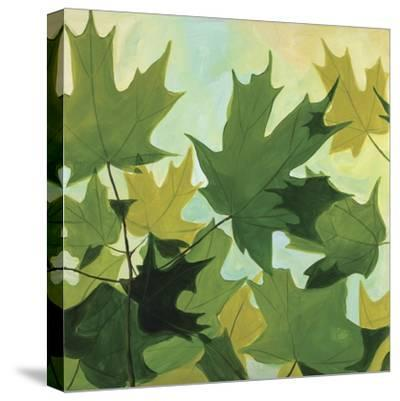 Summer Leaves-Catherine Breer-Stretched Canvas Print