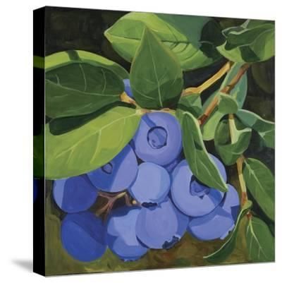 Blueberries-Catherine Breer-Stretched Canvas Print