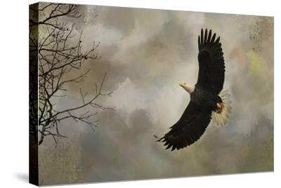 After the Intruder-Jai Johnson-Stretched Canvas Print