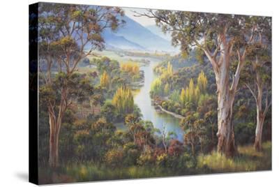 Tumut Atmospherics-John Bradley-Stretched Canvas Print