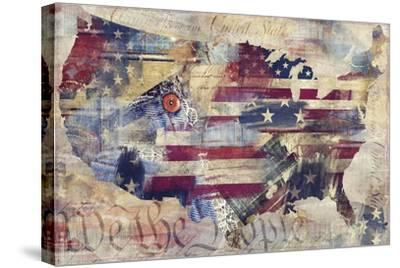 We The People-Mindy Sommers-Stretched Canvas Print
