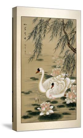 Swan Swim-Marcus Jules-Stretched Canvas Print