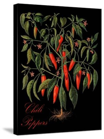 Chili Peppers-Mindy Sommers-Stretched Canvas Print