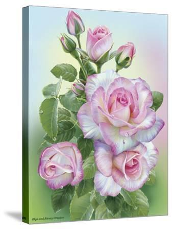 Morning Roses-Olga And Alexey Drozdov-Stretched Canvas Print