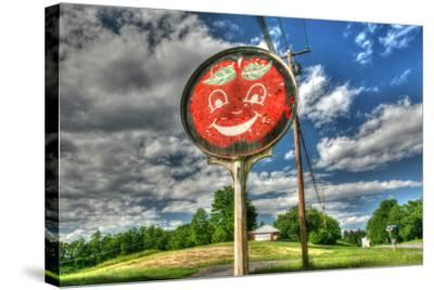 Happy Apple-Robert Goldwitz-Stretched Canvas Print