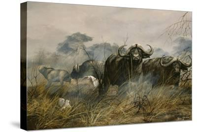 On the Move-Trevor V. Swanson-Stretched Canvas Print