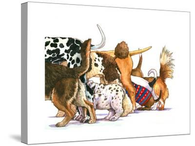 Dog Tails-Wendy Edelson-Stretched Canvas Print