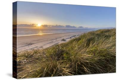 Sand Dunes and Pacific Ocean in the Oregon Dunes NRA, Oregon-Chuck Haney-Stretched Canvas Print