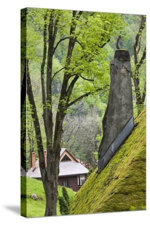 Romania, Transylvania, Bran, Bran Castle, Grass Covered Farm Buildings-Walter Bibikow-Stretched Canvas Print