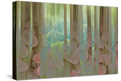 USA, Washington State, Seabeck. Collage of Oxalis and Trees-Don Paulson-Stretched Canvas Print