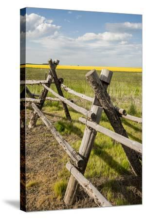 Idaho, Camas Prairie, Wooden Fence at Tolo Lake Access Area-Alison Jones-Stretched Canvas Print