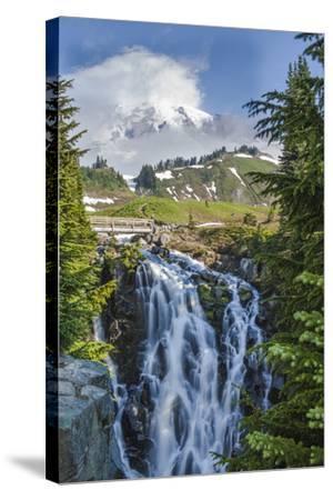 Braided Myrtle Falls and Mt Rainier, Skyline Trail, NP, Washington-Michael Qualls-Stretched Canvas Print