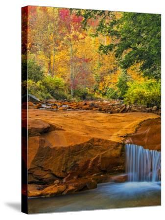 USA, West Virginia, Douglass Falls. Waterfall over Rock Outcrop-Jay O'brien-Stretched Canvas Print