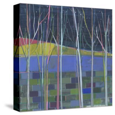 Stripes-Charlotte Evans-Stretched Canvas Print