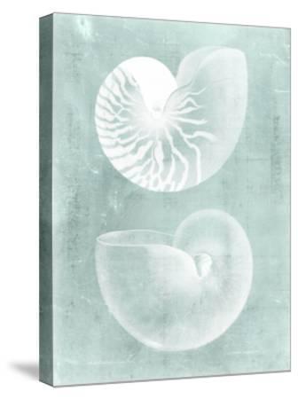 Nautilus on Spa I-Vision Studio-Stretched Canvas Print