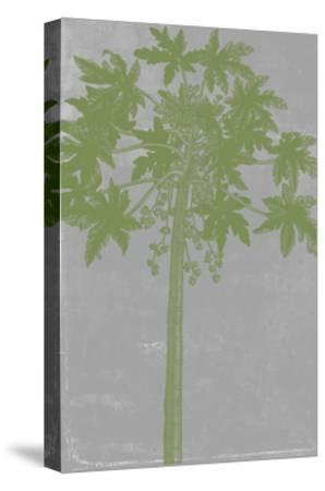 Chromatic Palms IX-Jennifer Goldberger-Stretched Canvas Print