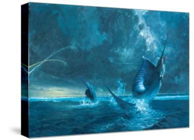 Double Header Against the Reef, 2003-Stanley Meltzoff-Stretched Canvas Print