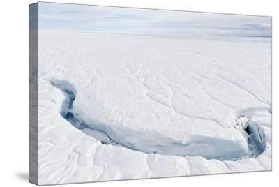 A Fracture Line Dissecting the Surface of the Ice on the Greenland Ice Sheet-Jason Edwards-Stretched Canvas Print