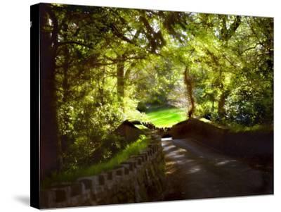 Devonshire Idyll-Jody Miller-Stretched Canvas Print
