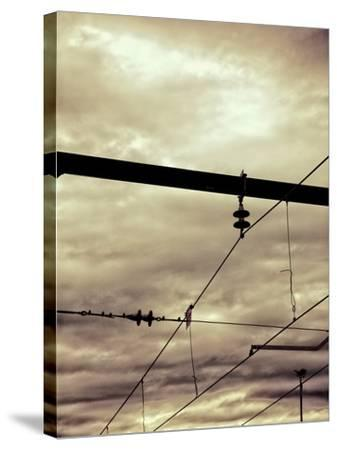 Power Lines-Steve Allsopp-Stretched Canvas Print