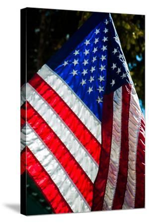 Stars and Stripes-Craig Howarth-Stretched Canvas Print
