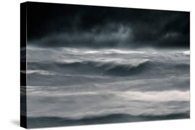 Black Wonder-David Baker-Stretched Canvas Print