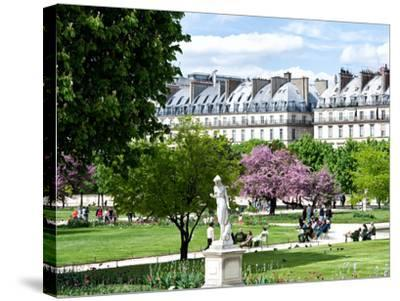 Garden of the Tuileries, the Louvre, Paris, France-Philippe Hugonnard-Stretched Canvas Print