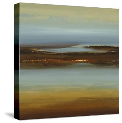 Zen Land-Lisa Ridgers-Stretched Canvas Print