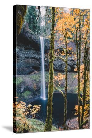 Mystical Autumn Scene at South Falls, Silver Falls State Park, Oregon-Vincent James-Stretched Canvas Print