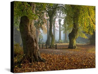 Locke Park-Craig Roberts-Stretched Canvas Print