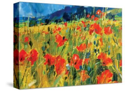 South Downs Poppies-Chris Forsey-Stretched Canvas Print
