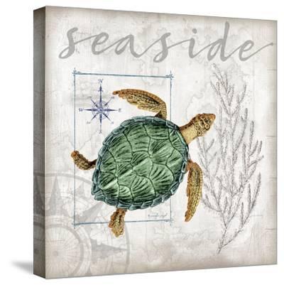 Coastal Sea Turtle-Jennifer Pugh-Stretched Canvas Print