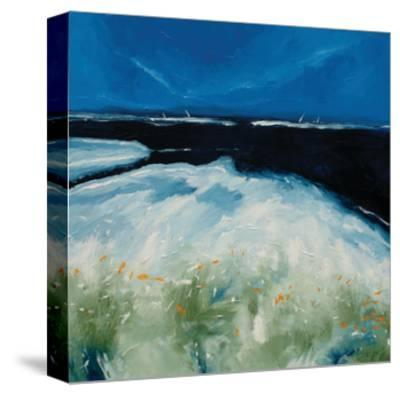 Beach with Flowers-Stuart Roy-Stretched Canvas Print