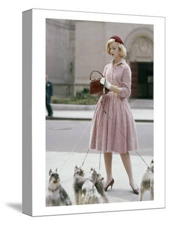 Glamour - October 1959 - Woman Walking a Pack of Dogs-Sante Forlano-Stretched Canvas Print
