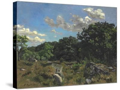 Landscape at Chailly, 1865-Jean Frederic Bazille-Stretched Canvas Print