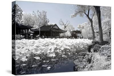 China 10MKm2 Collection - Another Look - Lotus Lake-Philippe Hugonnard-Stretched Canvas Print
