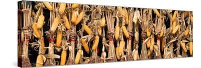 China 10MKm2 Collection - Corn Drying-Philippe Hugonnard-Stretched Canvas Print
