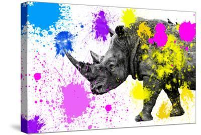 Safari Colors Pop Collection - Rhino-Philippe Hugonnard-Stretched Canvas Print