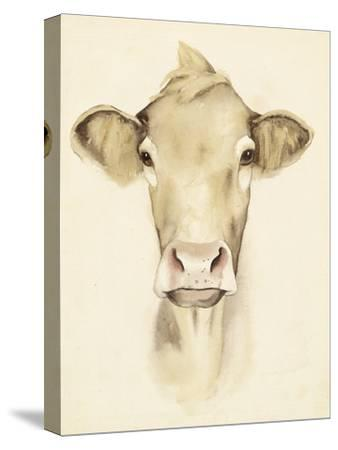 Watercolor Barn Animals III-Grace Popp-Stretched Canvas Print