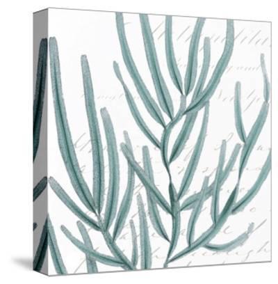 Aqua Marine I-Anna Hambly-Stretched Canvas Print
