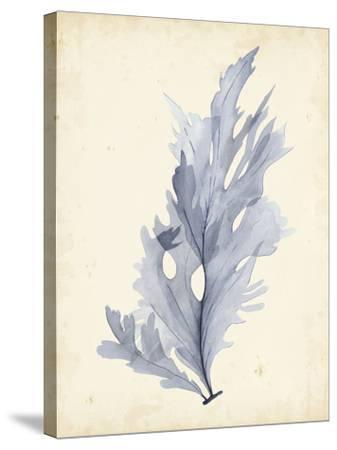 Watercolor Sea Grass VI-Grace Popp-Stretched Canvas Print
