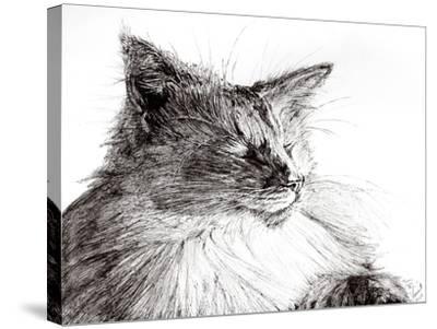 Monty Cozy Boy!, 2015-Vincent Alexander Booth-Stretched Canvas Print